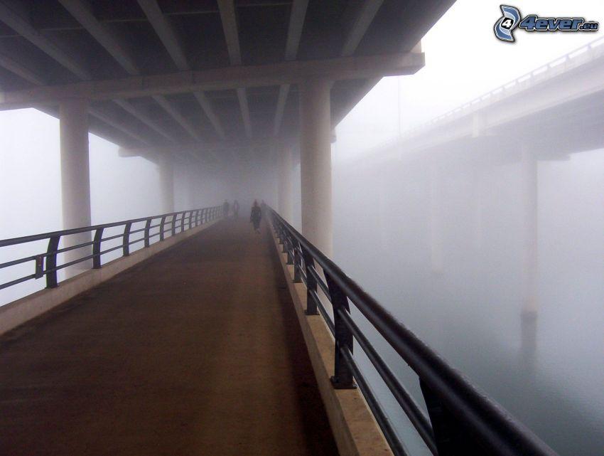 sotto il ponte, nebbia, marciapiede, ponti