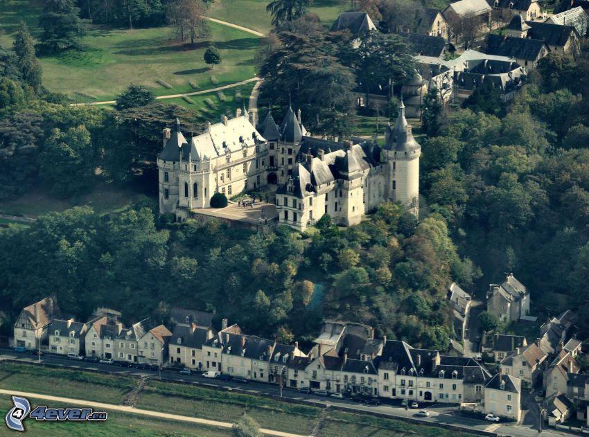 Château de Chaumont, alberi