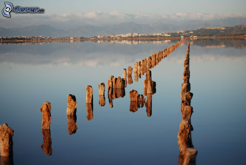 lago, legno, lungo molo
