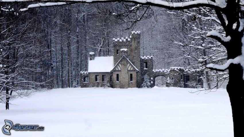 Squire's Castle, castello, bosco innevato, neve
