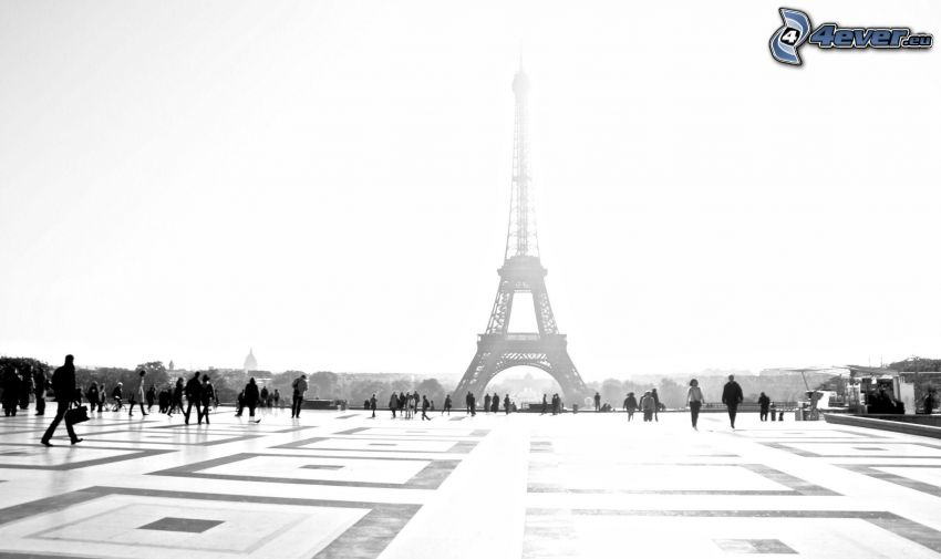 Torre Eiffel, Parigi, Francia, piazza, gente, bianco e nero