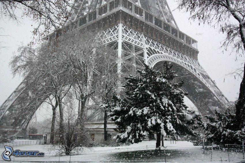 Torre Eiffel, alberi coperti di neve