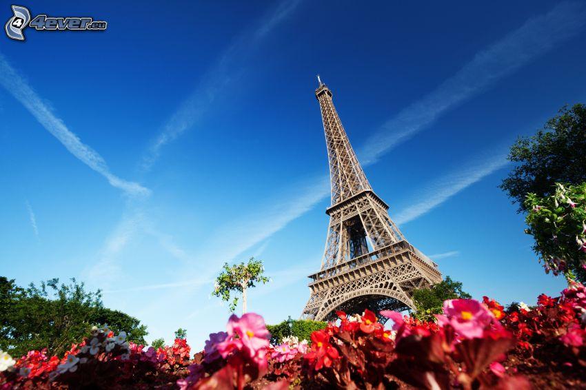 Torre Eiffel, fiori rossi