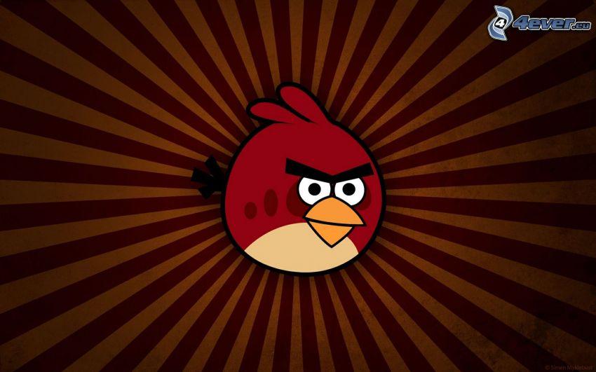 Angry birds, Like A Boss
