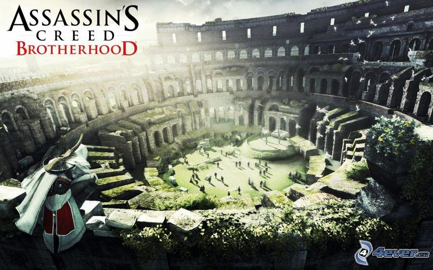 Assassin's creed Brotherhood, Colosseo