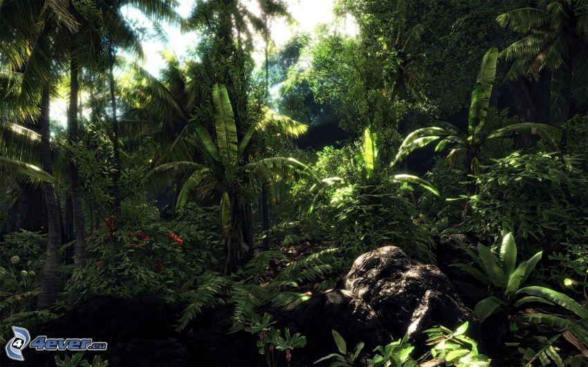 Crysis, giungla