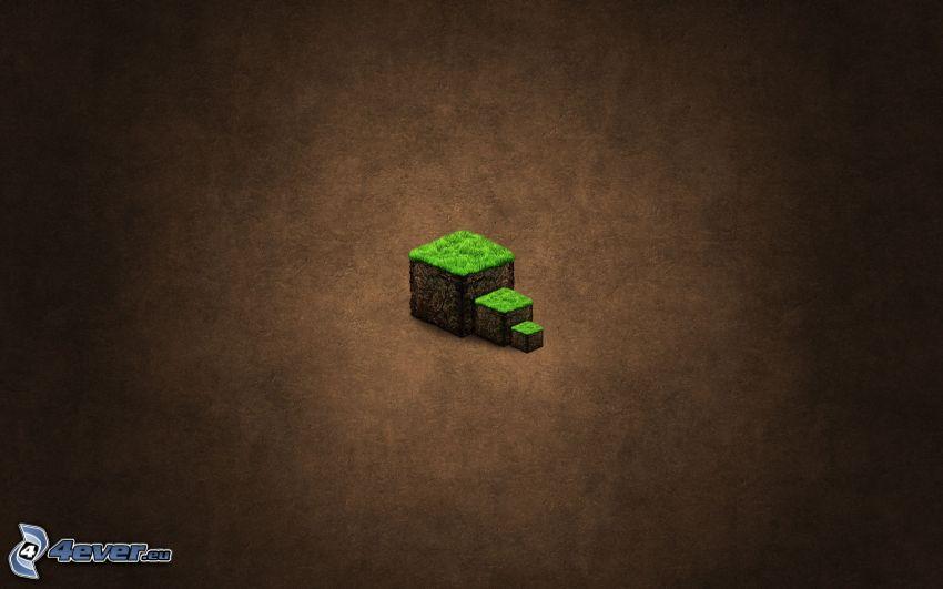Minecraft, cubi