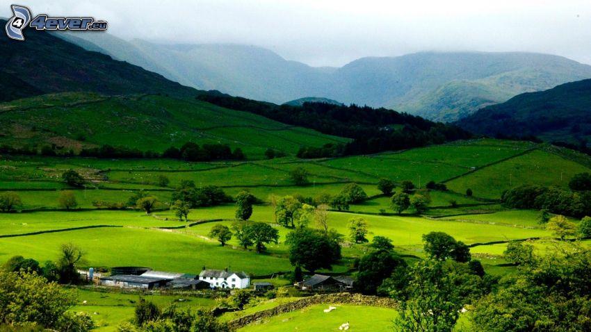 boschi e prati, montagna, abitazione