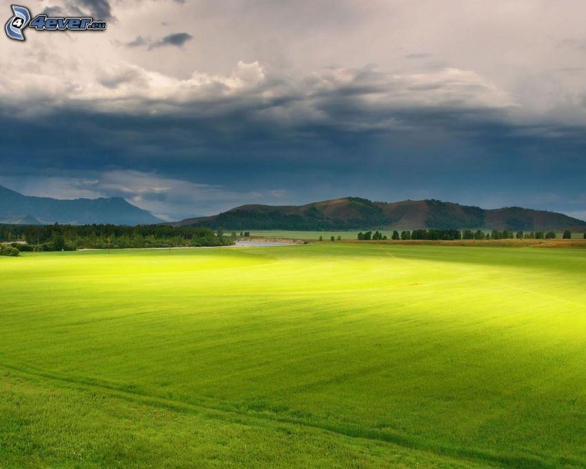 campo, montagna, cielo scuro