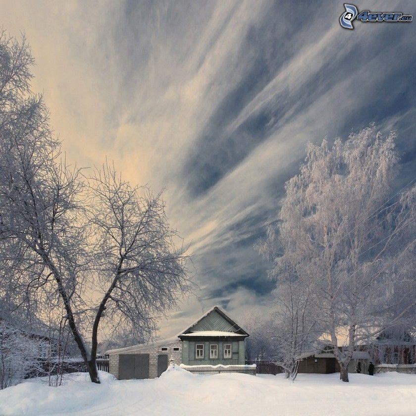 casa nevosa, alberi coperti di neve