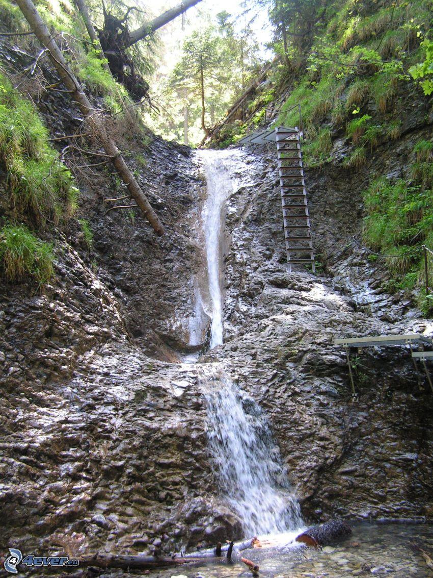 cascata, parco nazionale Slovensky raj