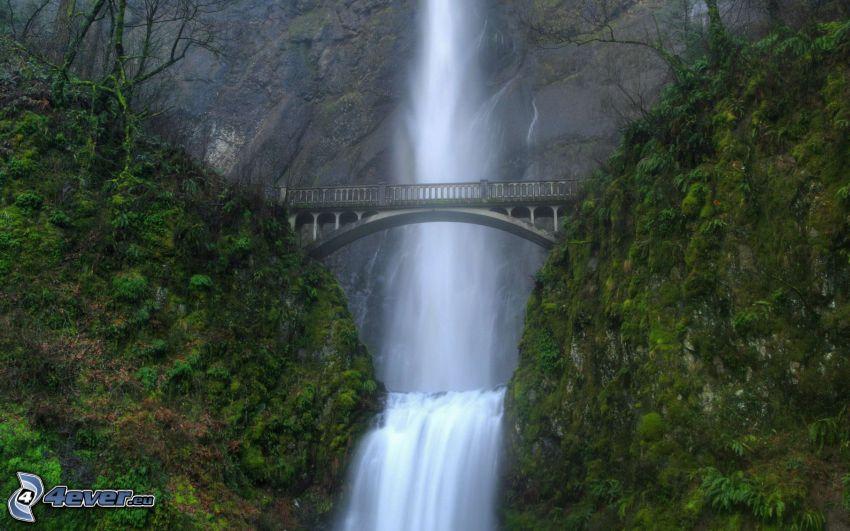 cascata, ponte di pietra, rocce
