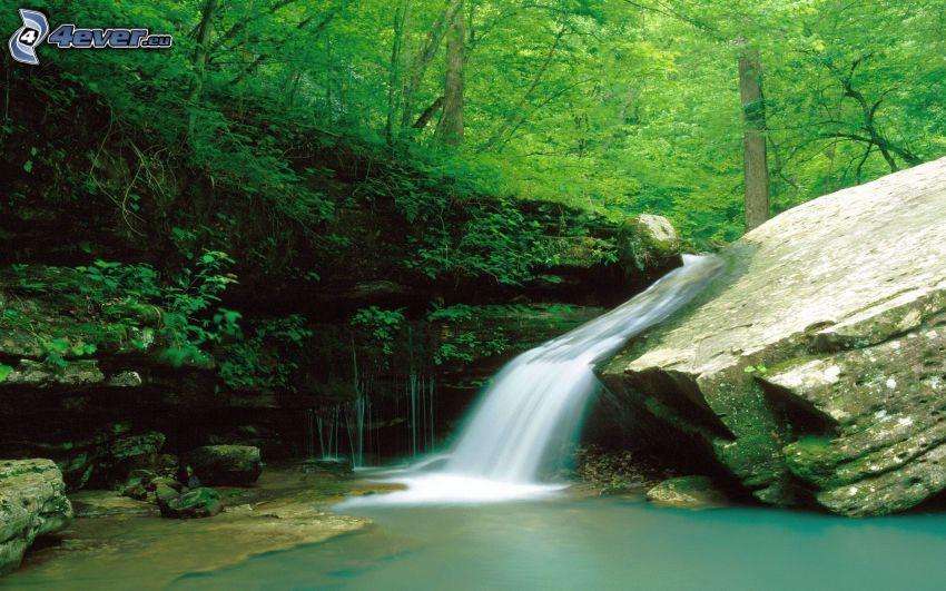 cascata, rocce, alberi, verde