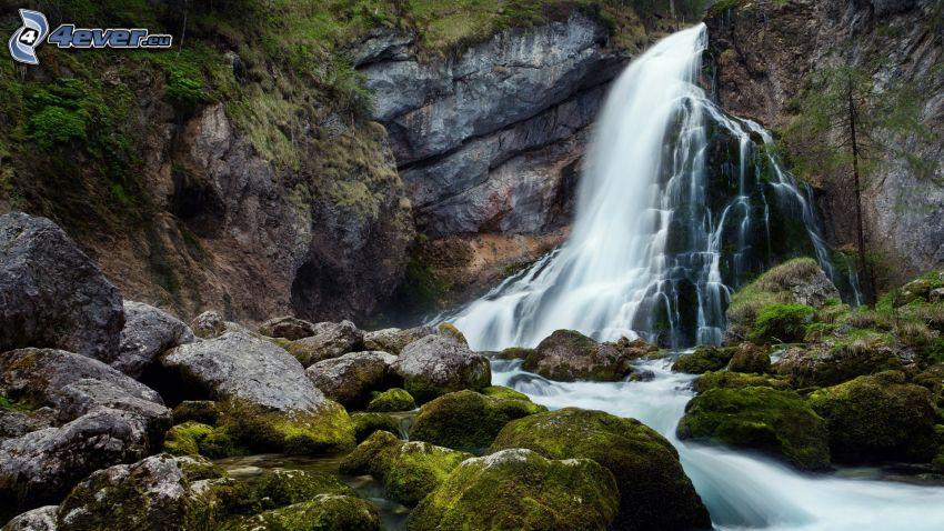 cascata, rocce, muschio