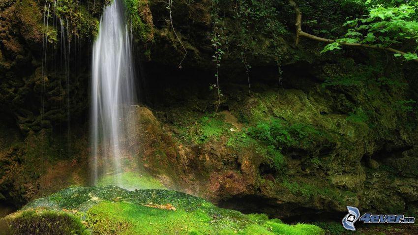 cascata, rocce, verde