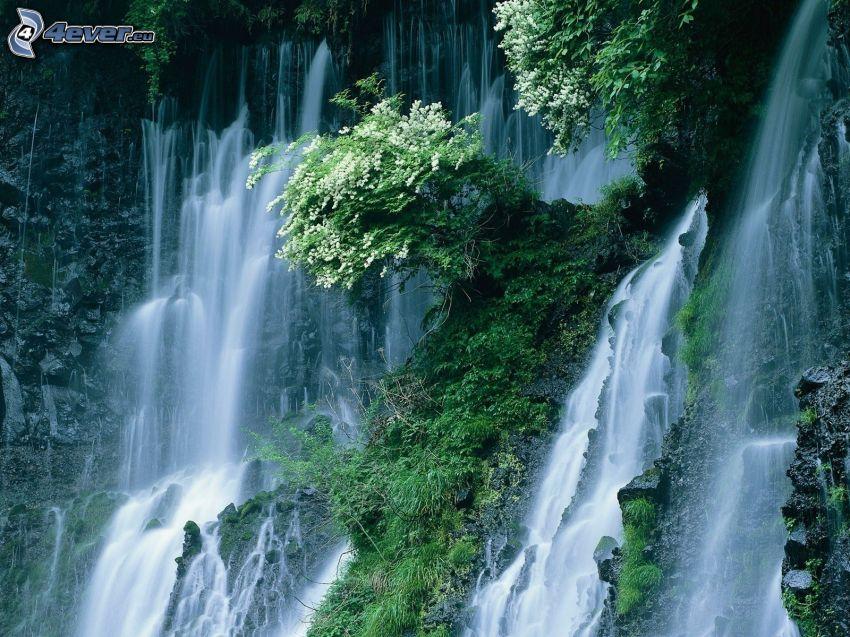 cascata enorme