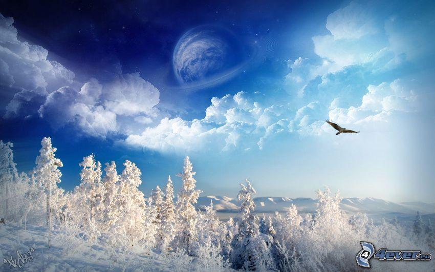 cielo, pianeta, falcone, inverno