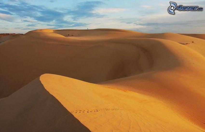 deserto, dune di sabbia