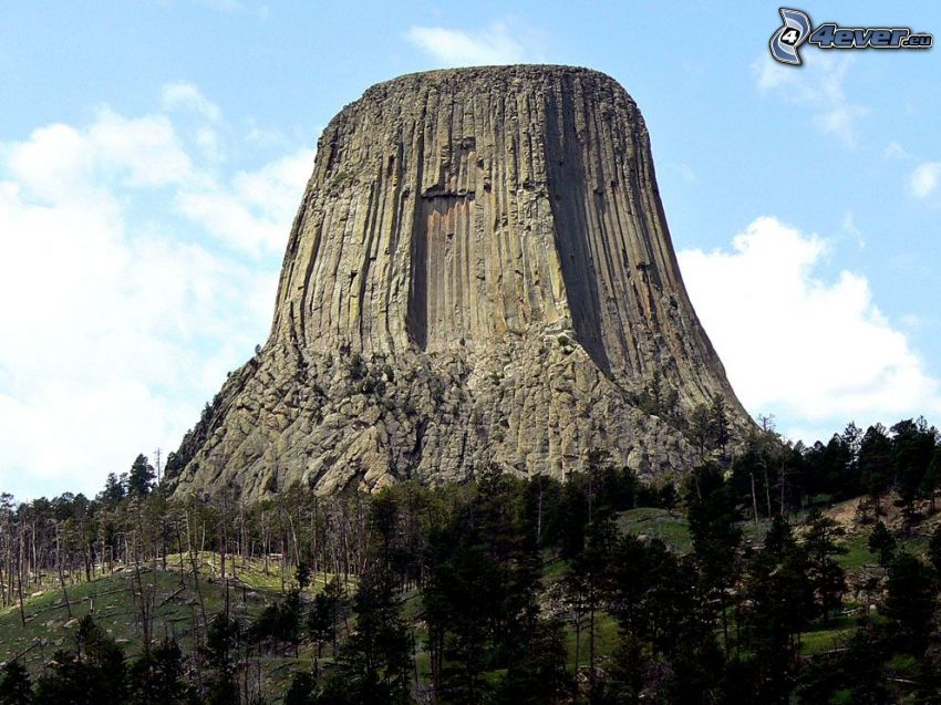 Devils Tower, roccia, bosco di conifere