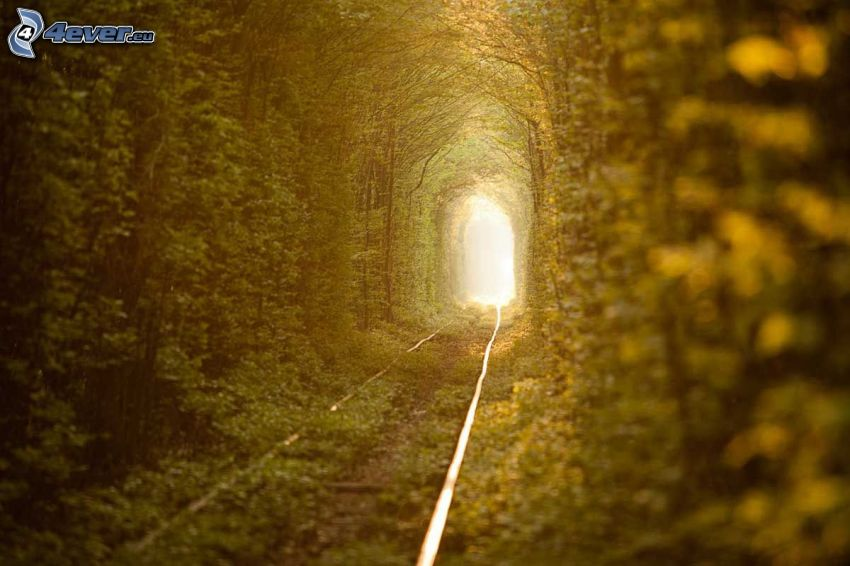 ferrovia, tunnel verde, luce