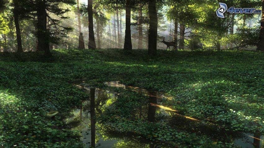 foresta, palude, daino, frate, raggi di sole nella foresta
