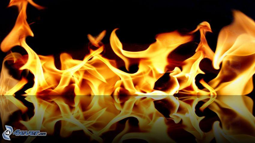 fuoco, riflessione