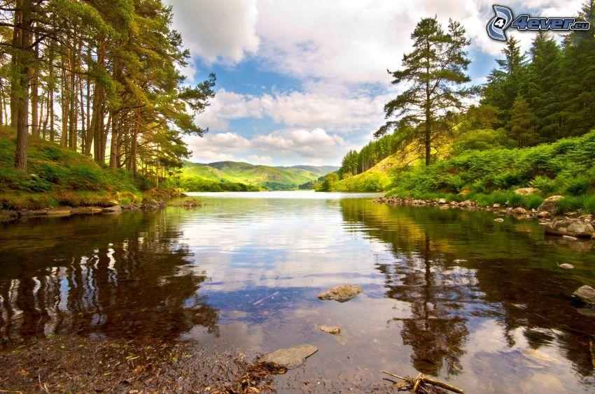 il fiume, foresta, montagna