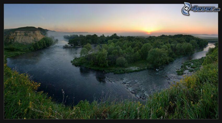 il fiume, isola, tramonto, alberi, l'erba, fiori gialli