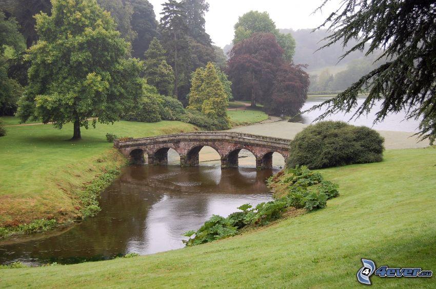 il fiume, ponte di pietra, alberi frondiferi