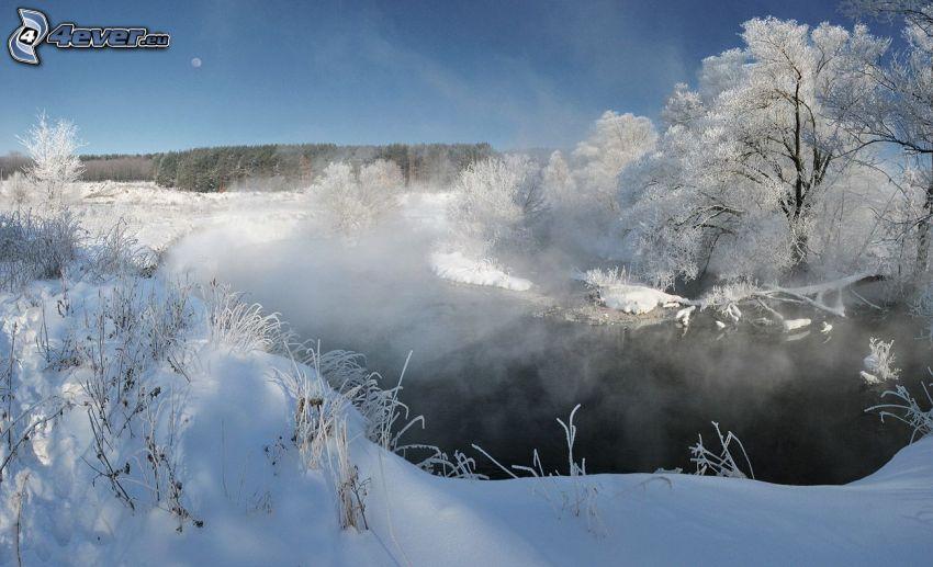 laghetto, vapore, alberi coperti di neve