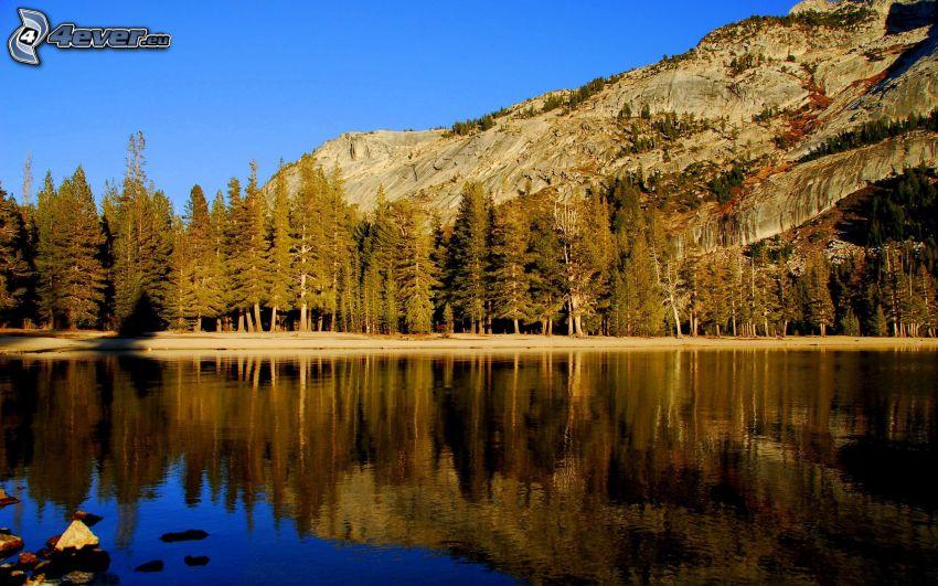 laghetto nella foresta, collina rocciosa