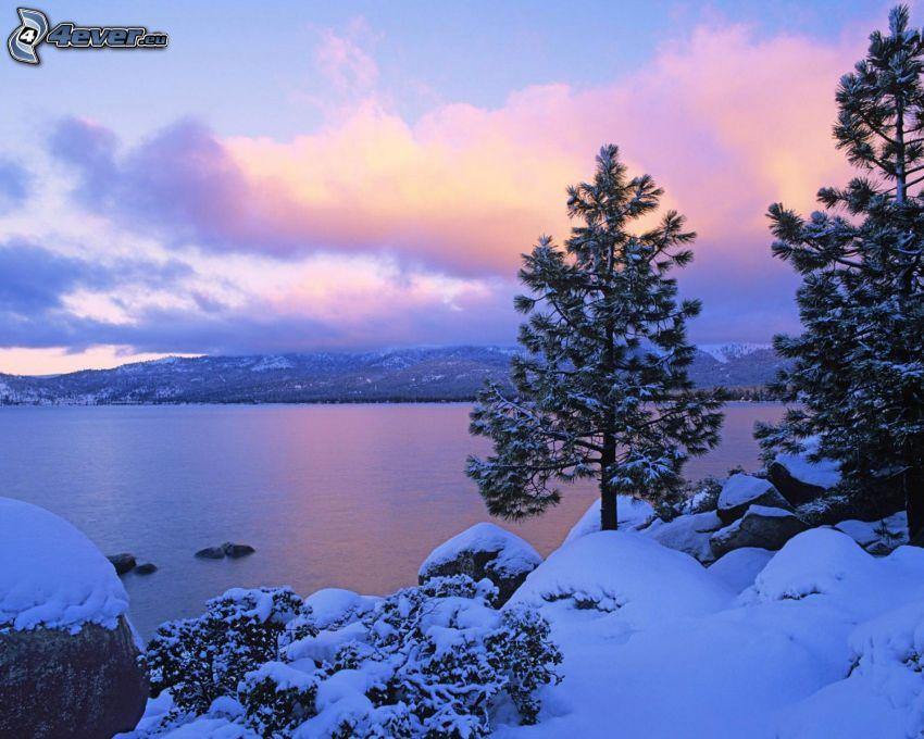 lago, alberi coperti di neve, montagna, nuvole