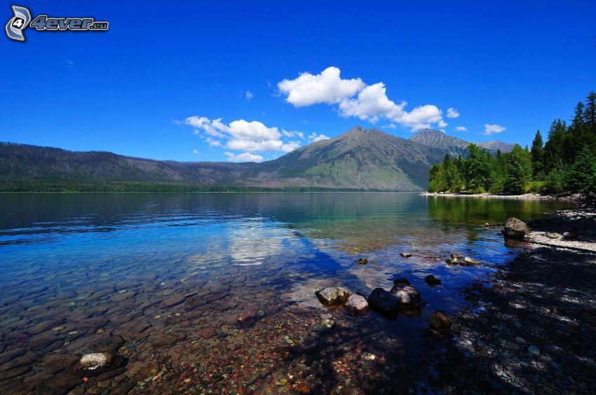 lago, montagna, bosco di conifere