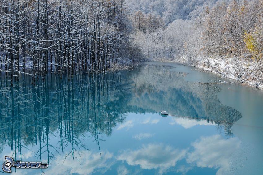 lago azzurro, alberi coperti di neve