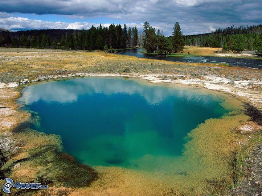 lago azzurro, lago di montagna, il fiume, foresta, alberi di conifere
