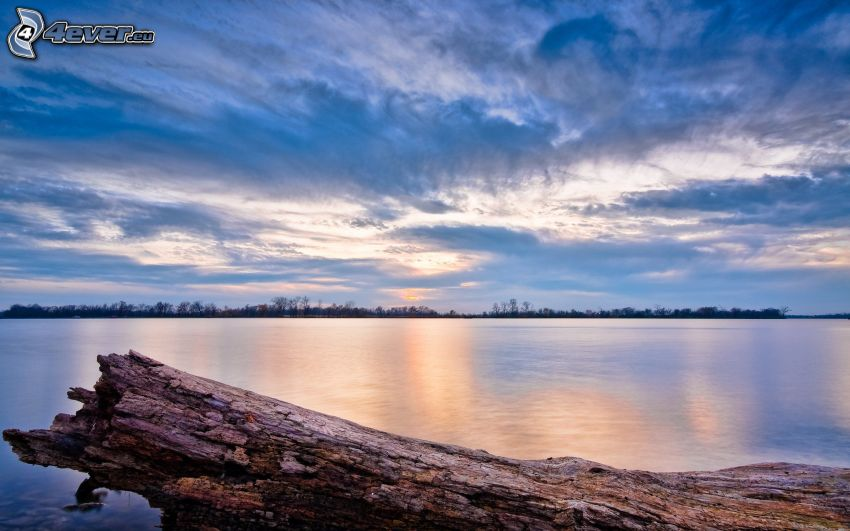 lago grande, tronco, text