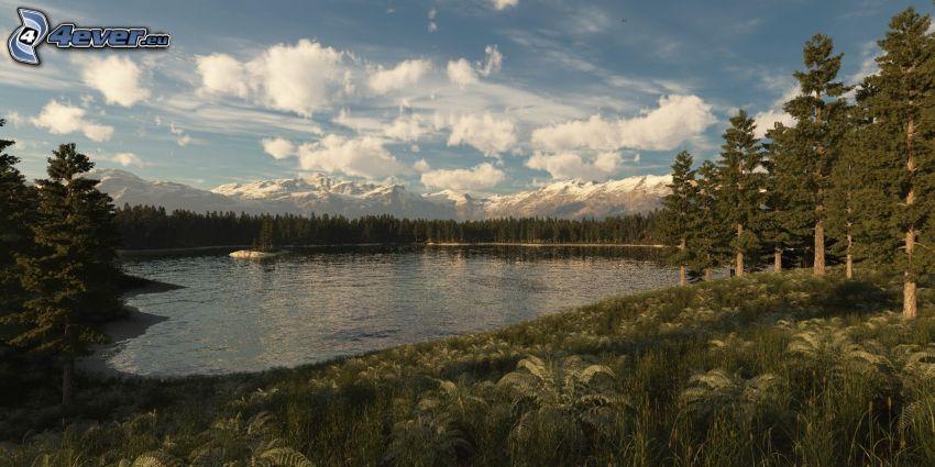 Lago nel bosco, alberi di conifere