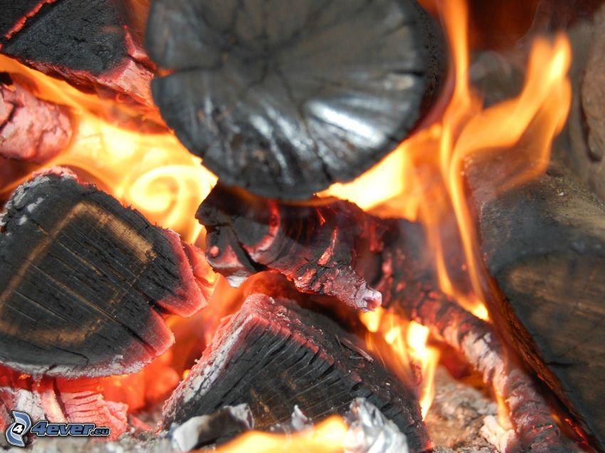 legno, fuoco