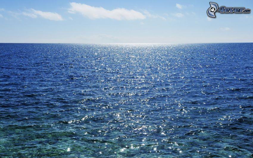 alto mare