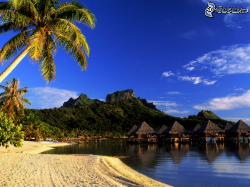 bungalow sul mare a Bora Bora, spiaggia, palme, cielo