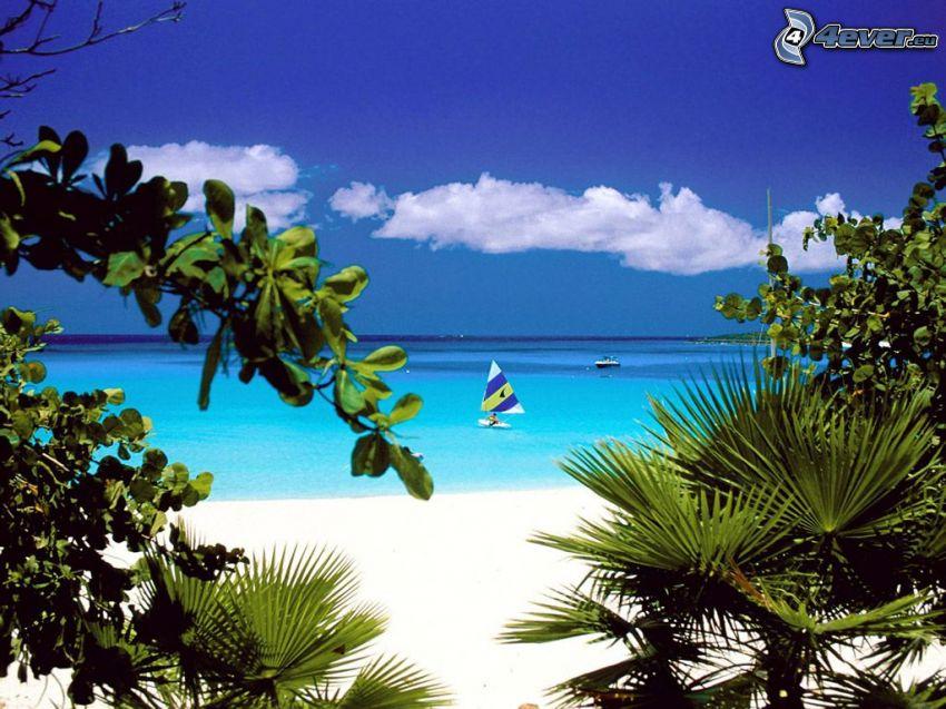 imbarcazione, spiaggia, baia