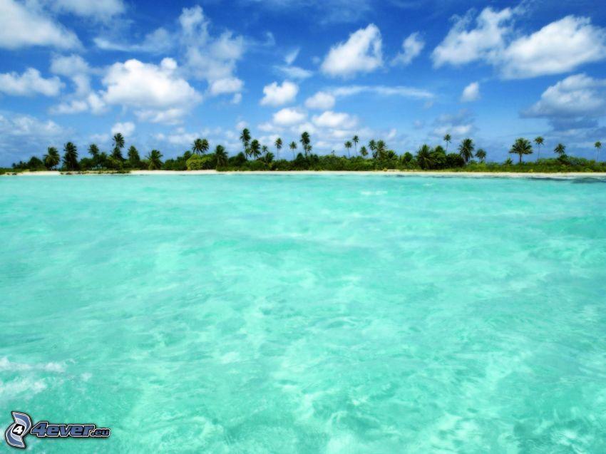 isola, palme, mare azzurro, nuvole