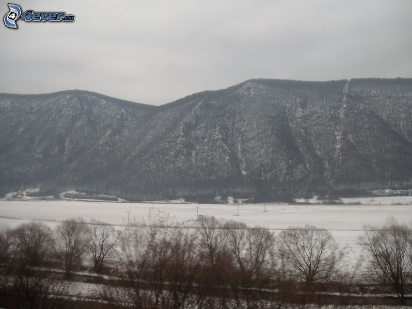 montagna, collina, inverno, neve, panorama