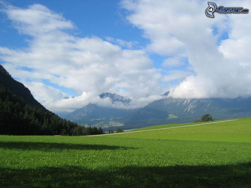 montagna, prato, nuvole