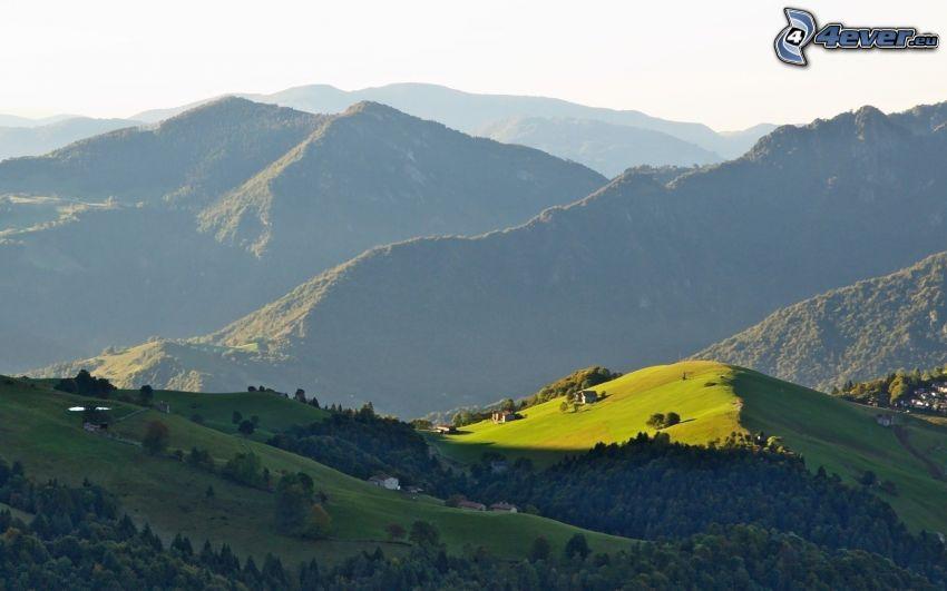 montagne, boschi e prati