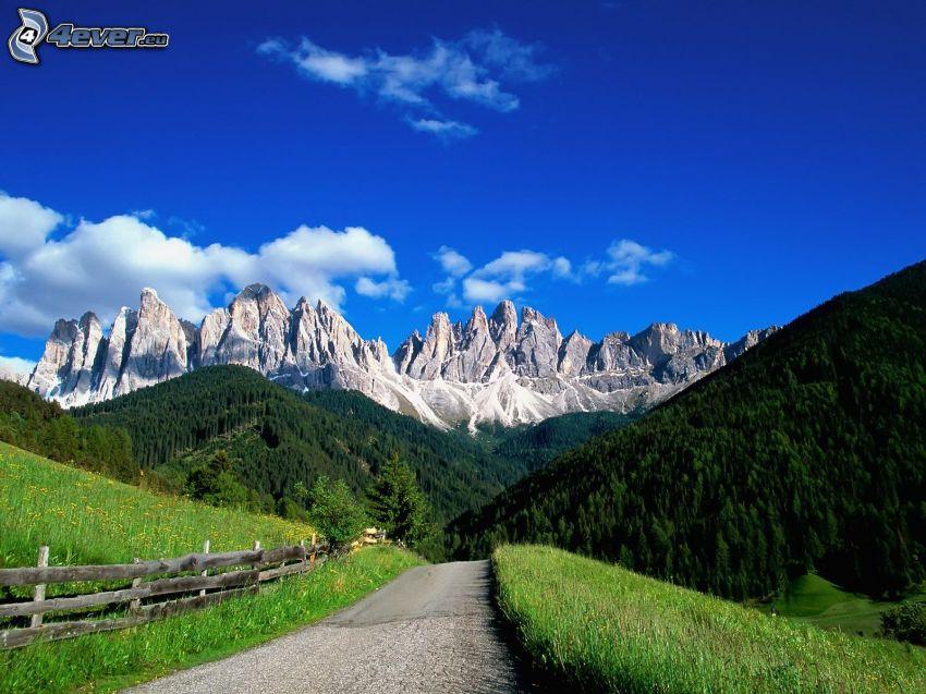 Dolomiti, montagne rocciose, strada, bosco di conifere