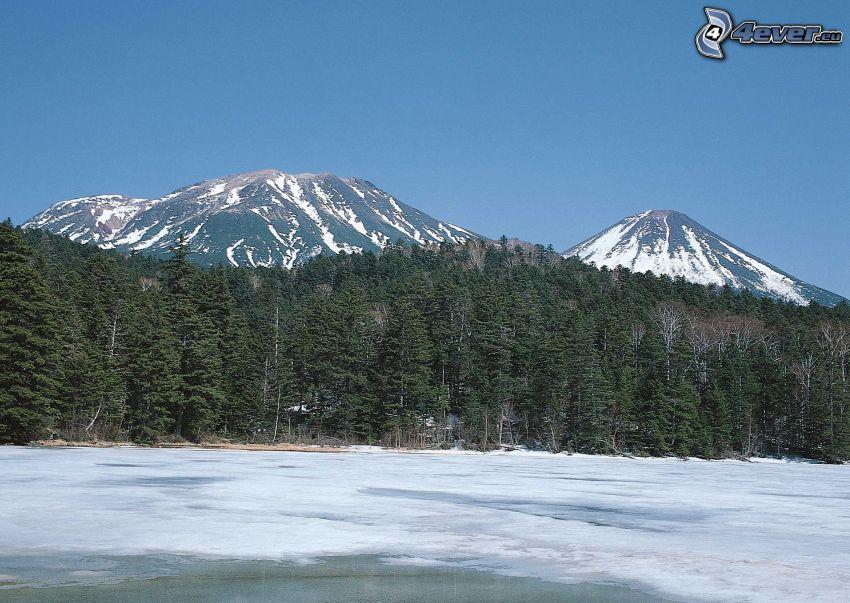 foresta, lago ghiacciato, montagne innevate, Giappone