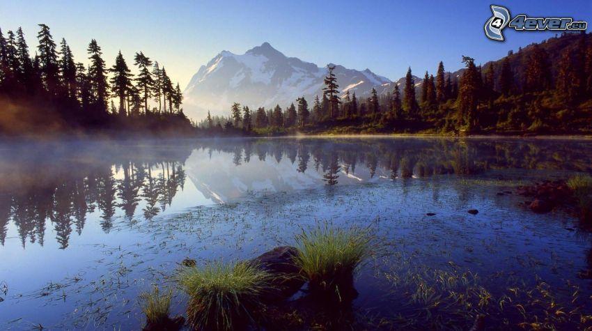 lago calmo di sera, montagna innevata, alberi di conifere