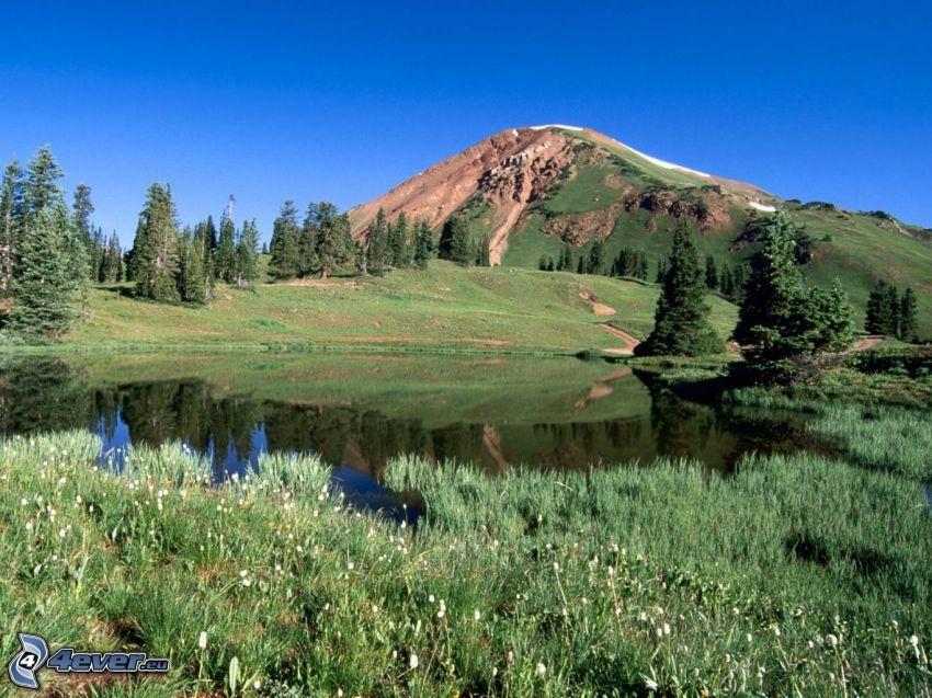 lago di montagna, collina, alberi di conifere