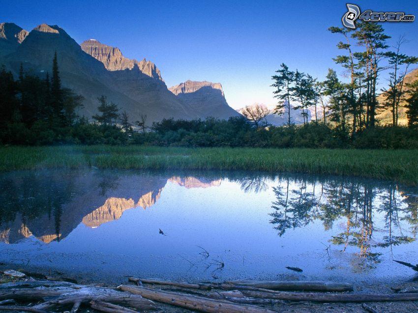 lago di montagna, montagne, paludi, alberi, foresta